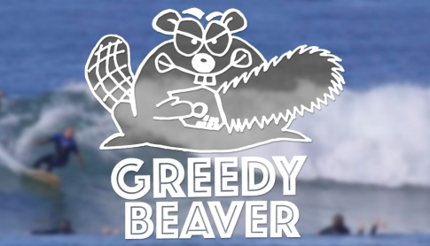 Firewire Greedy Beaver Surfboard Review