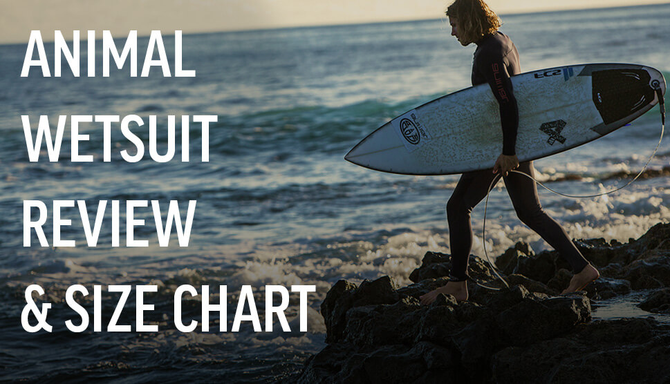 Animal Wetsuits Review and Size Chart