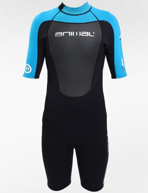 Animal Wetsuits Amp FL Shortie 3/2mm Summer 2013 wetsuit - Blk/Team Blue/White