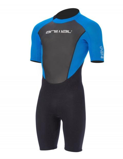 Animal Nova 3/2mm Shorty wetsuit 2017 - Aster Blue