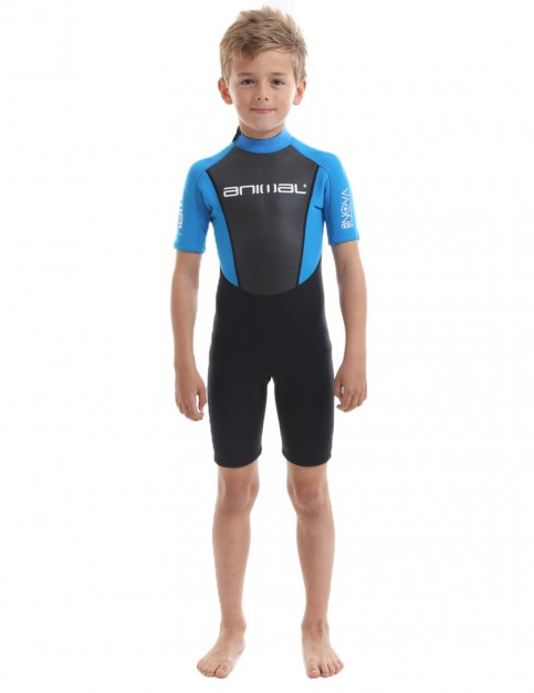 Animal Boys Nova Shorty 3/2mm wetsuit 2017 - Aster Blue